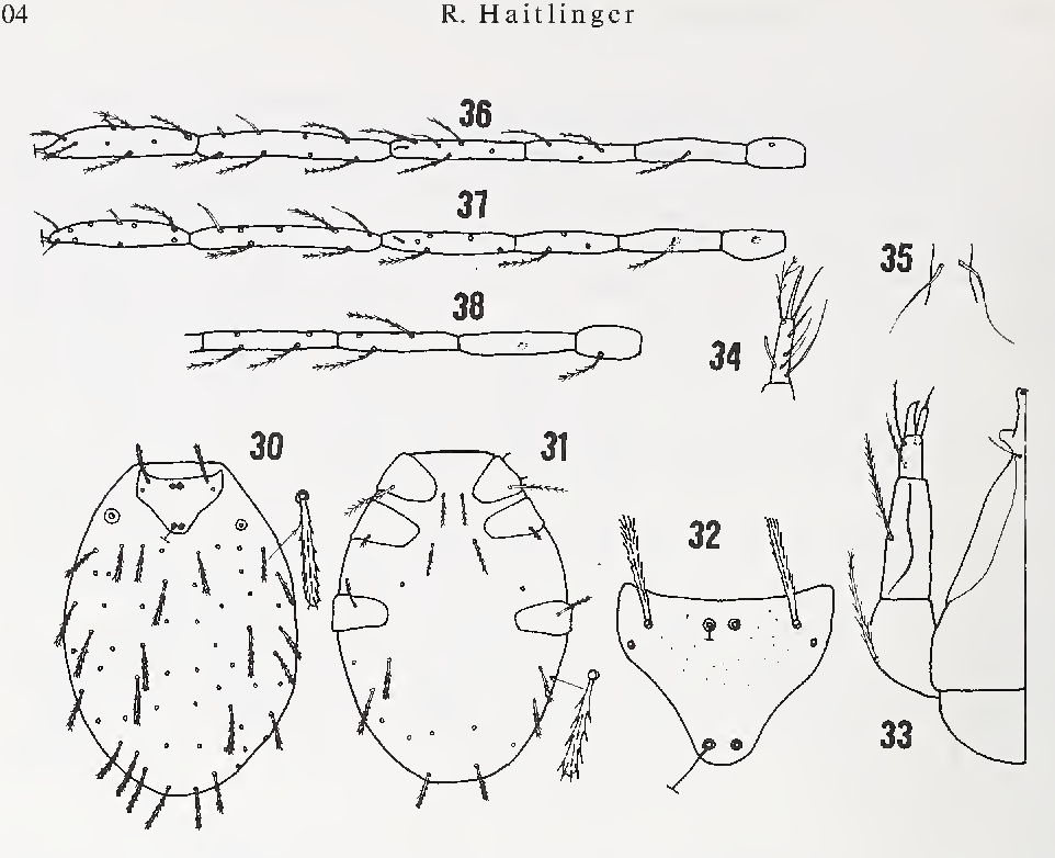 figure 30—38