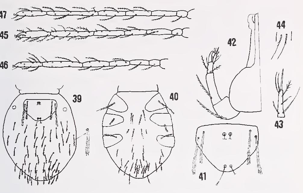 figure 39—47