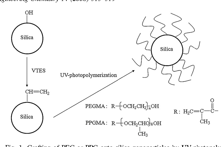 Surface properties of silica nanoparticles modified with