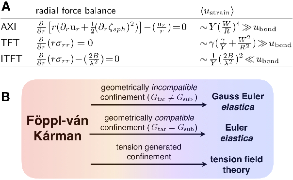 Figure 3 from Geometrically incompatible confinement of