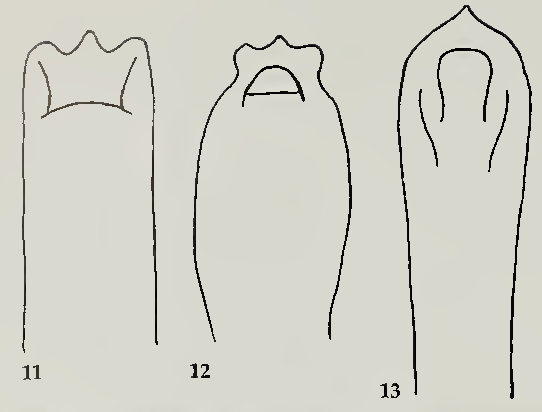 figure 11-12