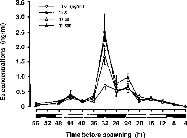 Effects Of Thyroid Hormone On Gonadotropin Induced Steroid