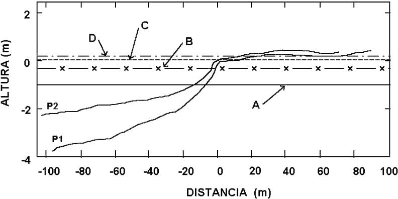 Variaciones geomorfolgicas en los ultimos 50 aos de la Isla ...