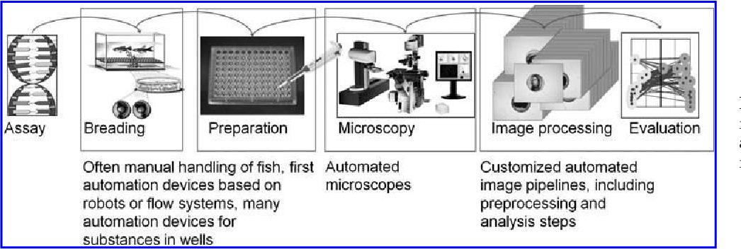 PDF] Automated processing of zebrafish imaging data: a survey ...