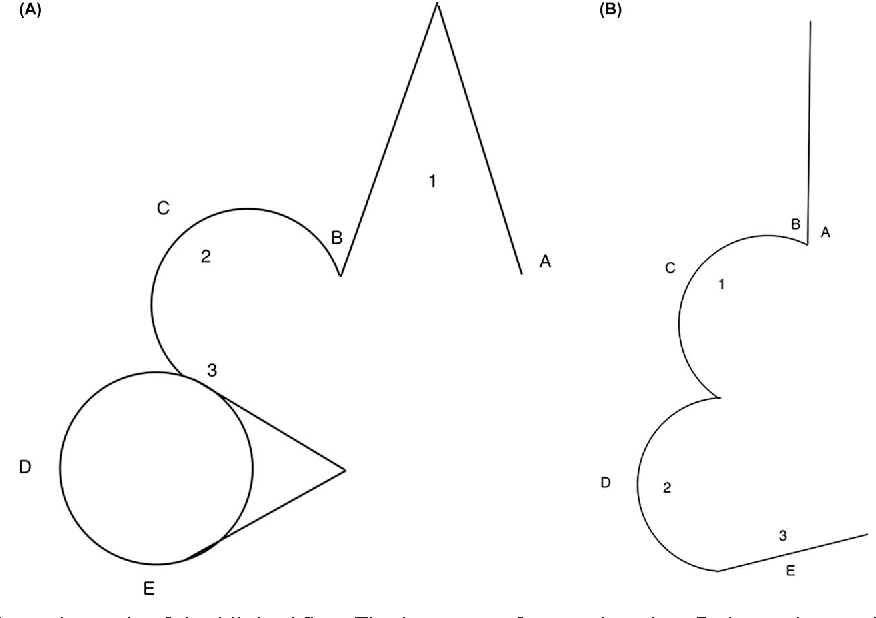 Figure 2 From Transposition Flaps Principles And Locations