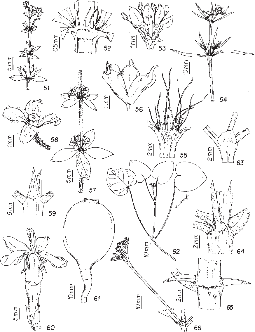 figure 51-66