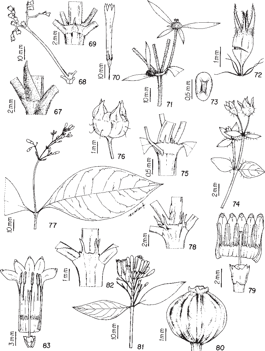 figure 67-83