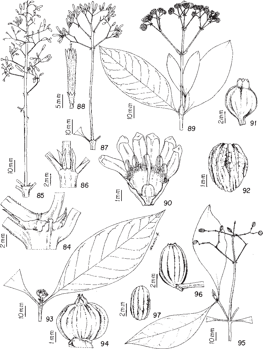 figure 84-97