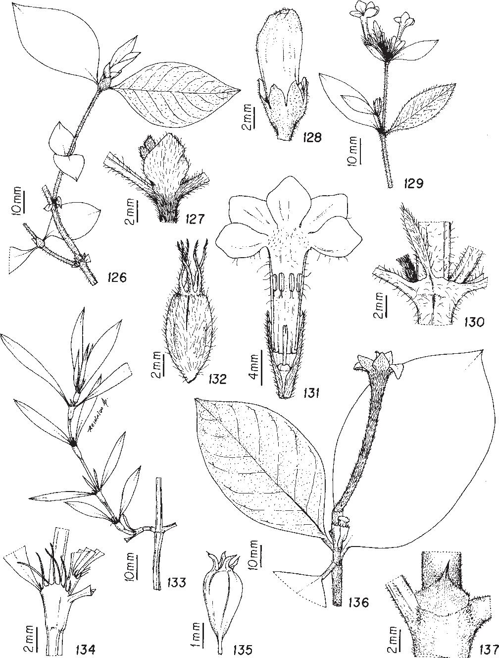 figure 126-137