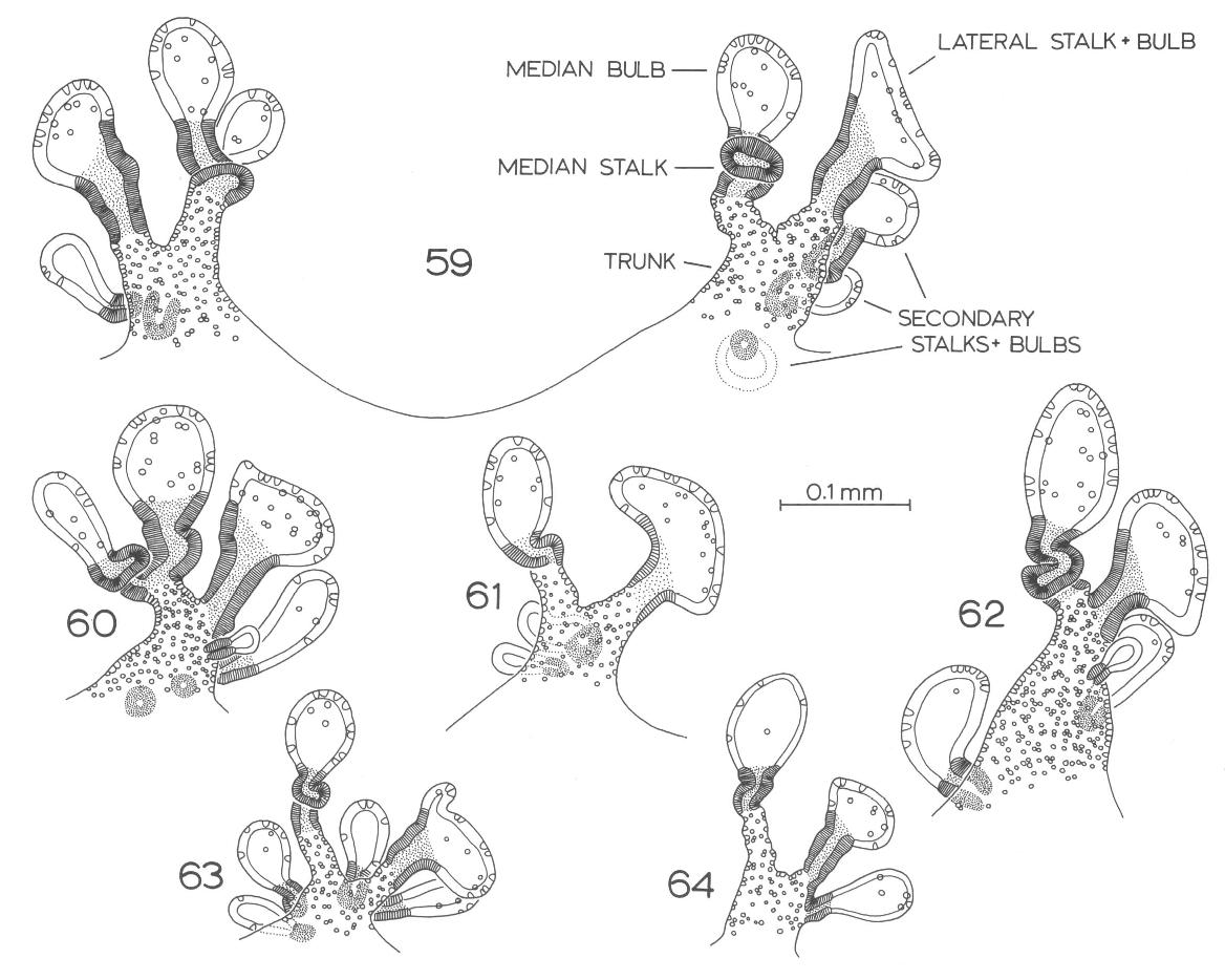figure 65-99