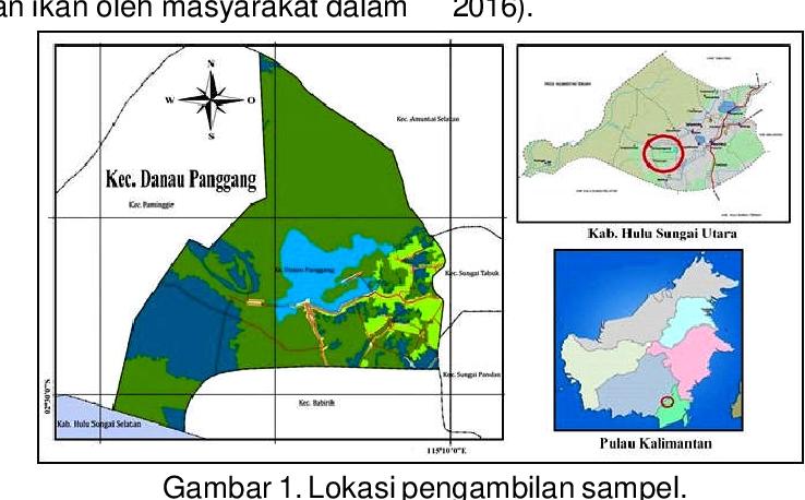 pdf aktivitas penangkapan dan produksi ikan di kabupaten hulu sungai utara kalimantan selatan semantic scholar semantic scholar
