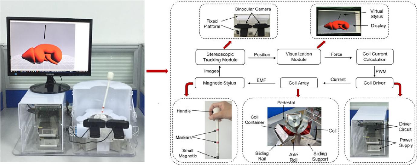 Magnetic Levitation Haptic Augmentation for Virtual Tissue