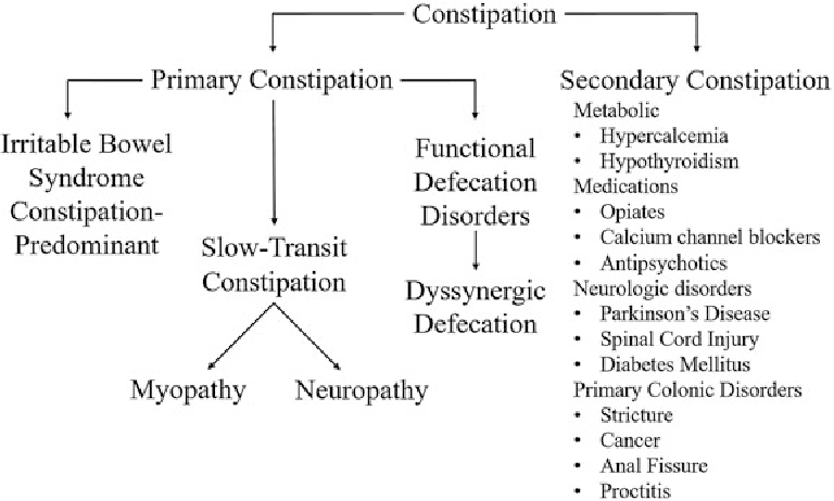 Figure 1 from Constipation: Pathophysiology and Current