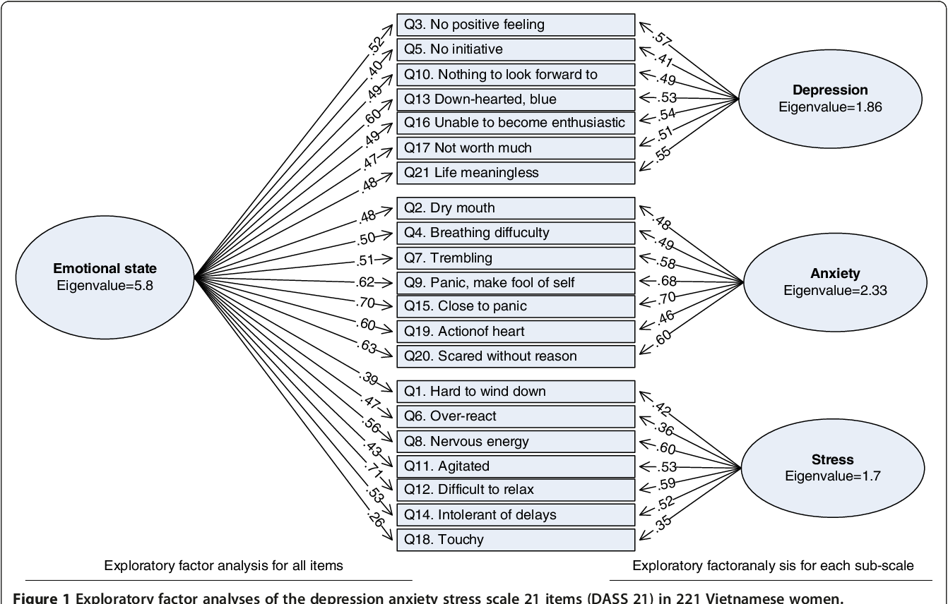 Validation Of The Depression Anxiety Stress Scales Dass 21 As A Screening Instrument For Depression And Anxiety In A Rural Community Based Cohort Of Northern Vietnamese Women Semantic Scholar