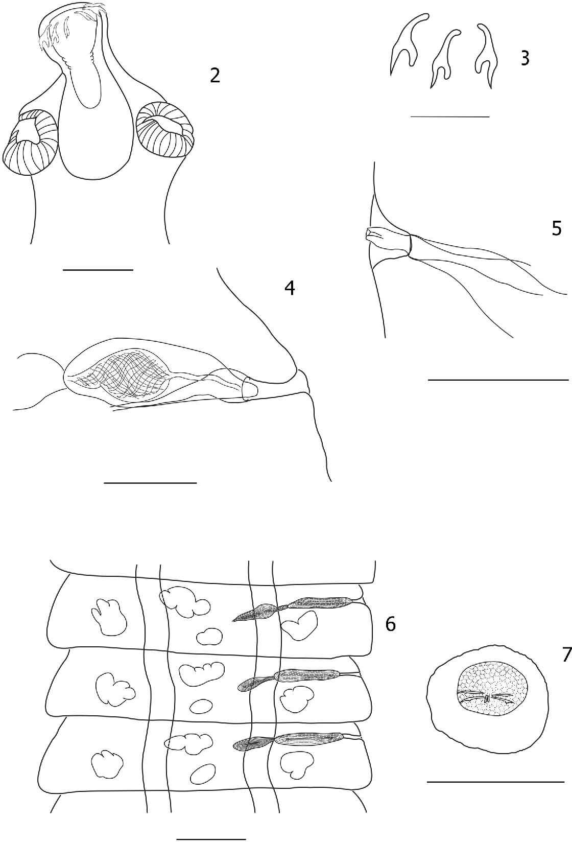 figure 2–7