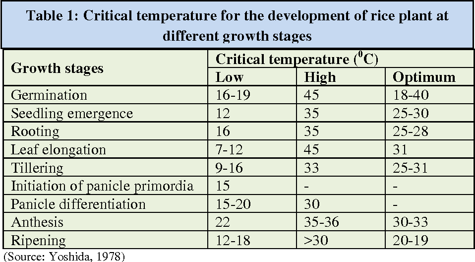 Table 1 from Effects of Increasing Temperature and