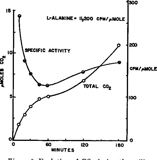 Figure 6 from Intermediate metabolism of aerobic spores  IV