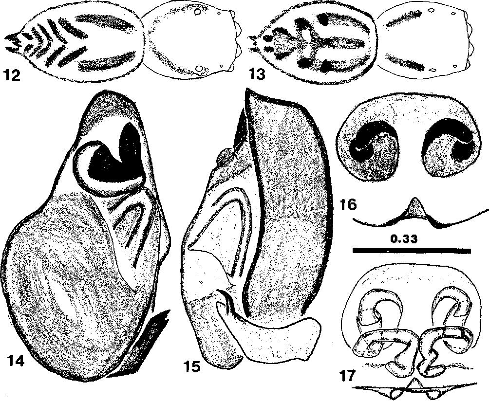 figure 12-17