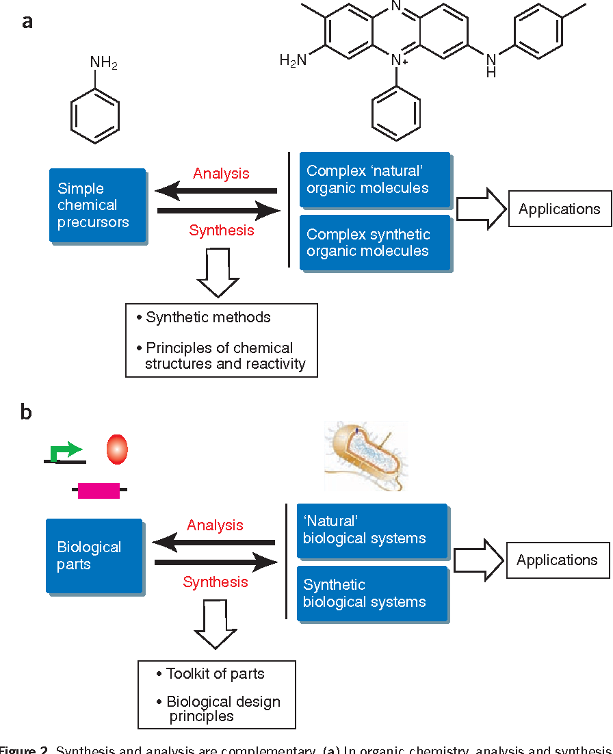 Moderne Synthetic biology: lessons from the history of synthetic organic ZX-17