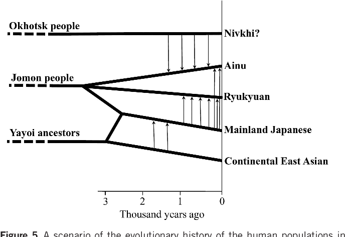 Figure 5 From The History Of Human Populations In The