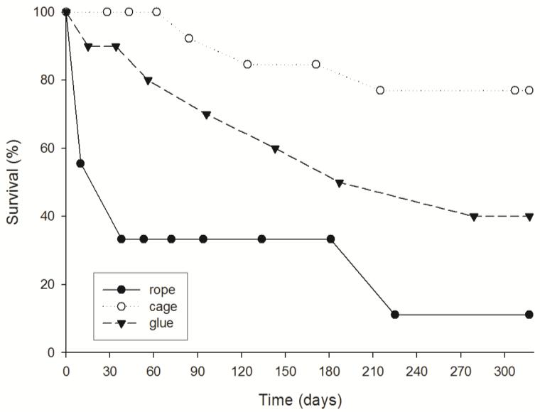 PDF] In Situ Aquaculture Methods for Dysidea avara