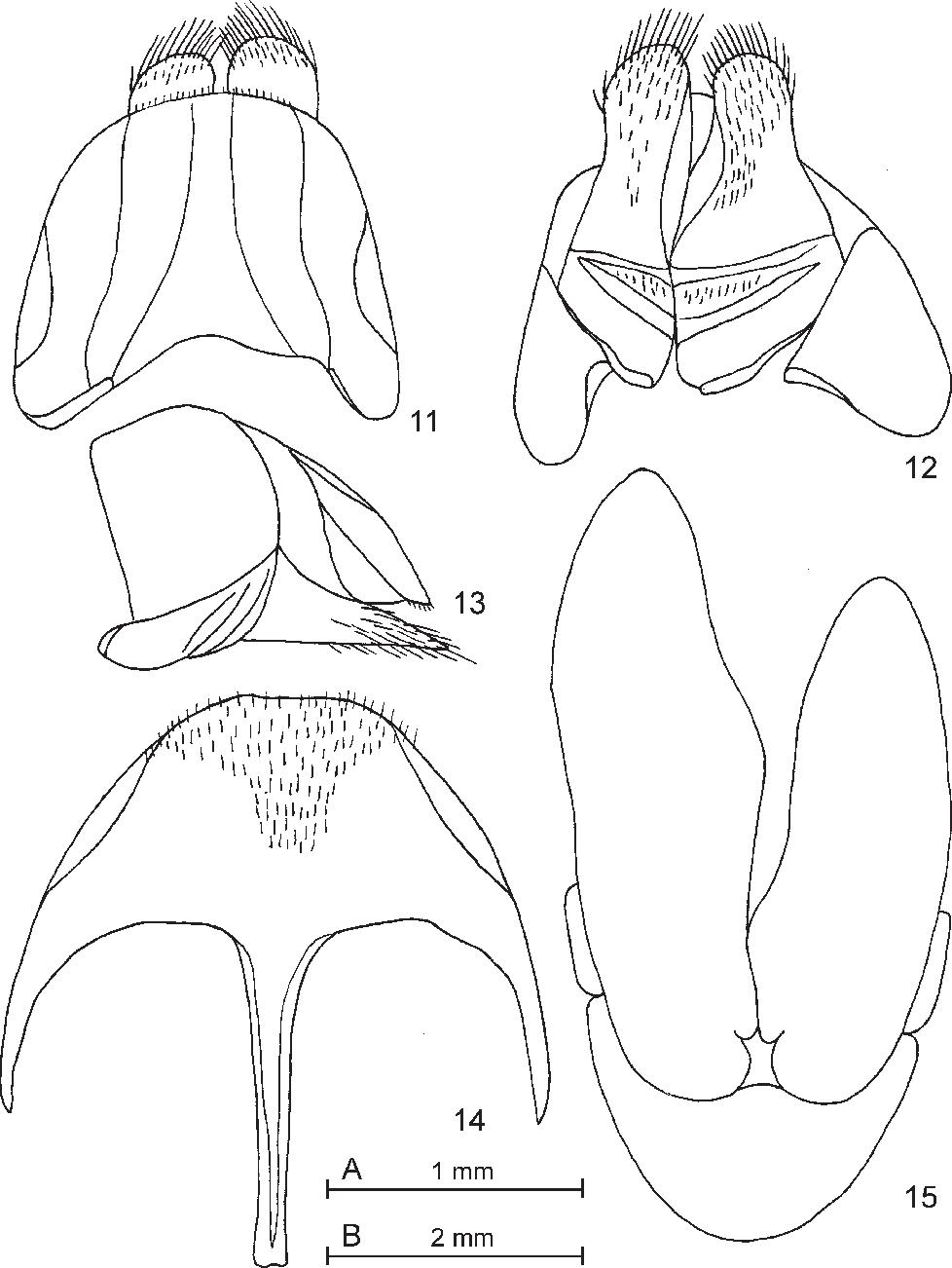 figure 11–15