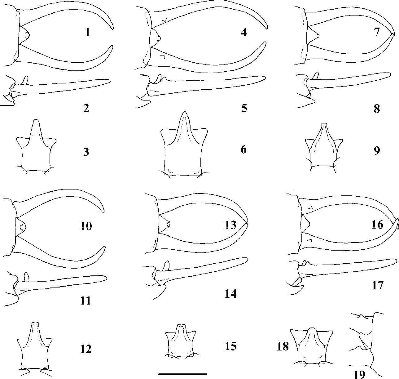 figure 1–19