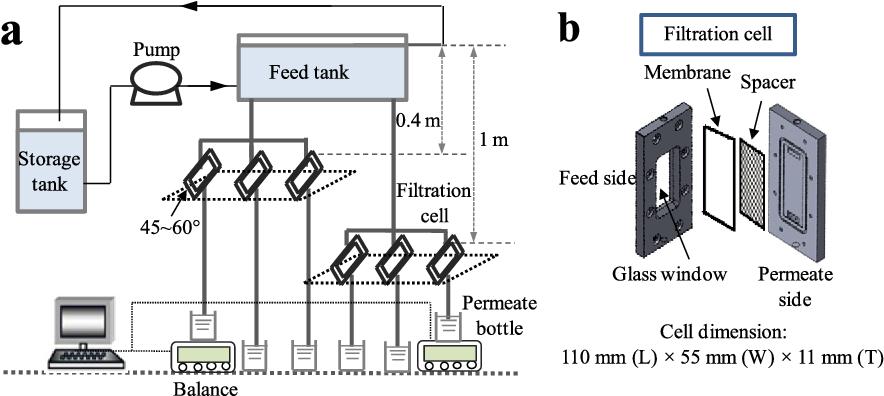 Gravity-driven membrane filtration as pretreatment for