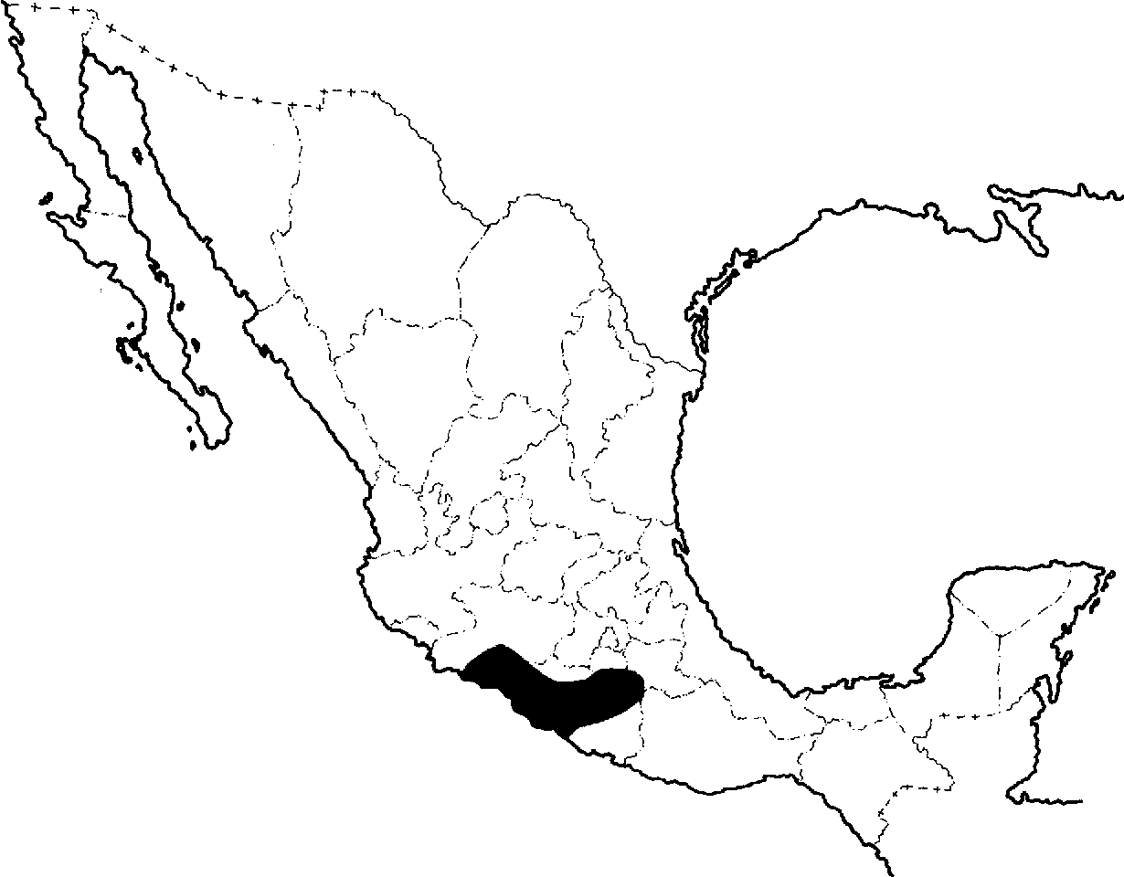 Figure 10 from Plasmodium (Sauramoeba) pelaezi n. sp., a ... on most beautiful places to visit in mexico, map of south mexico, malaria plasmodium species, malaria speciation, malaria plasmodium life cycle, weather map mexico, united states map with canada and mexico, malaria species location, malaria mosquito, detailed map mexico, atlas of mexico, malaria symptoms, poverty map mexico, cdc malaria mexico, jw marriott cancun mexico, vintage map of mexico, malaria prevention, tourist map yucatan peninsula mexico, political map of country of mexico, the mexican riviera map mexico,