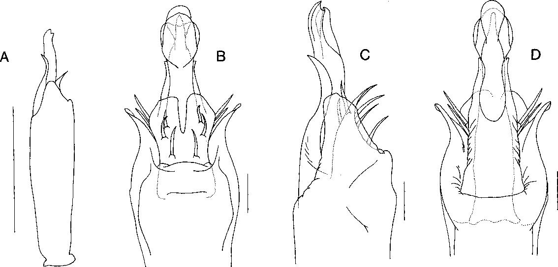 figure 4,5