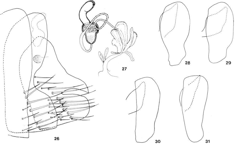 figure 26-31