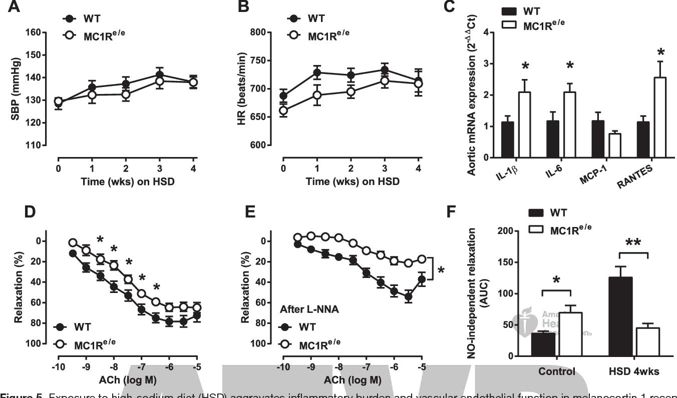 Figure 5 from Deficiency in Melanocortin 1 Receptor