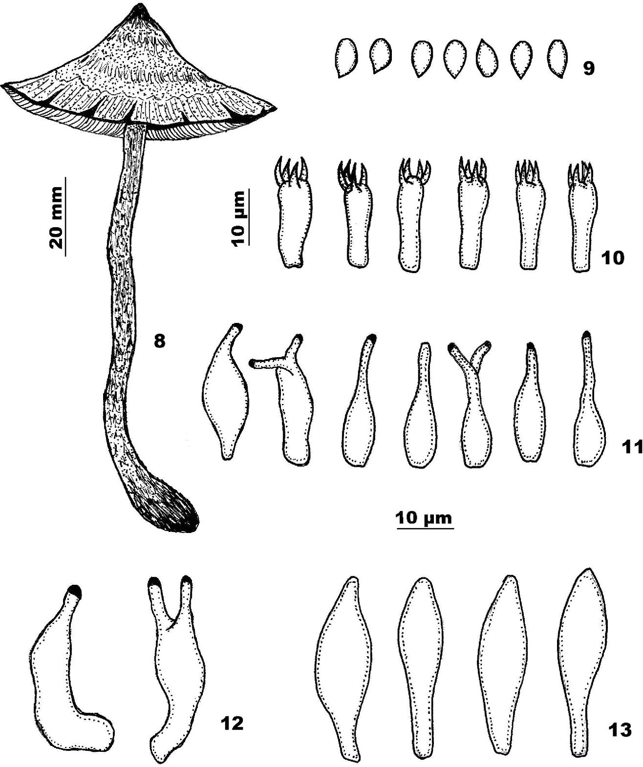 figure 8-13
