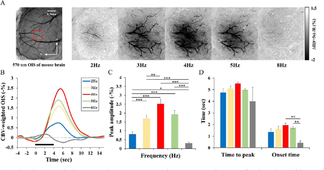 Figure 4 from Mouse fMRI under ketamine and xylazine ...