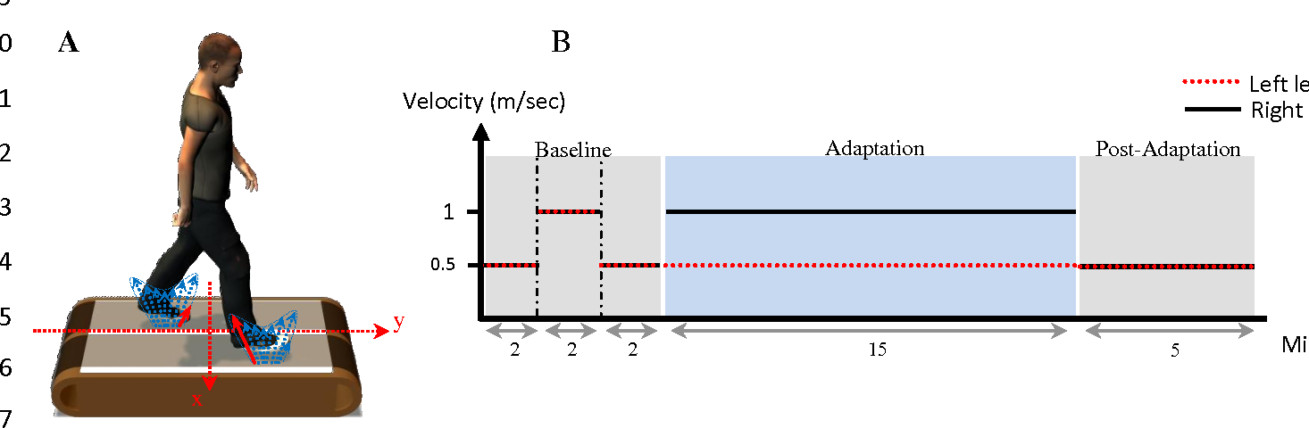 Figure 1 from Kinetic adaptation during locomotion on a
