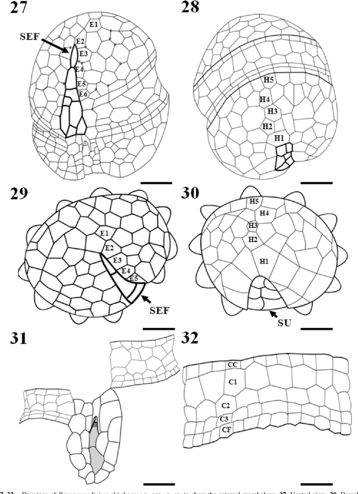 figure 27–32