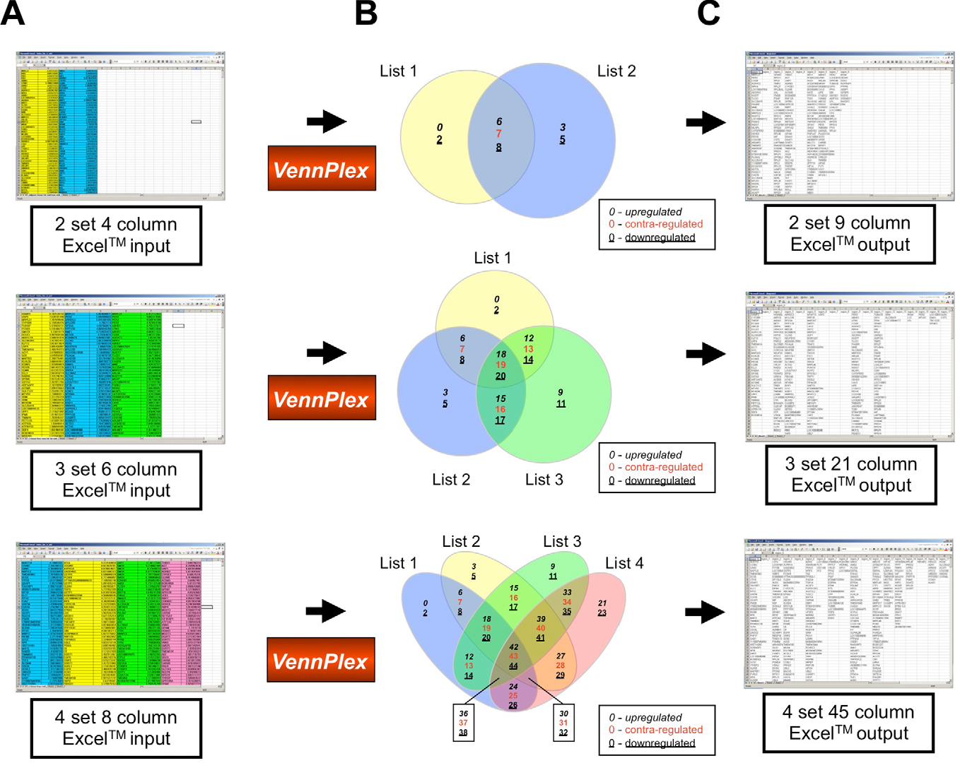 Figure 1 From Vennplex A Novel Venn Diagram Program For Comparing And Visualizing Datasets With Differentially Regulated Datapoints Semantic Scholar