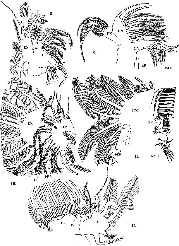 figure 8–12