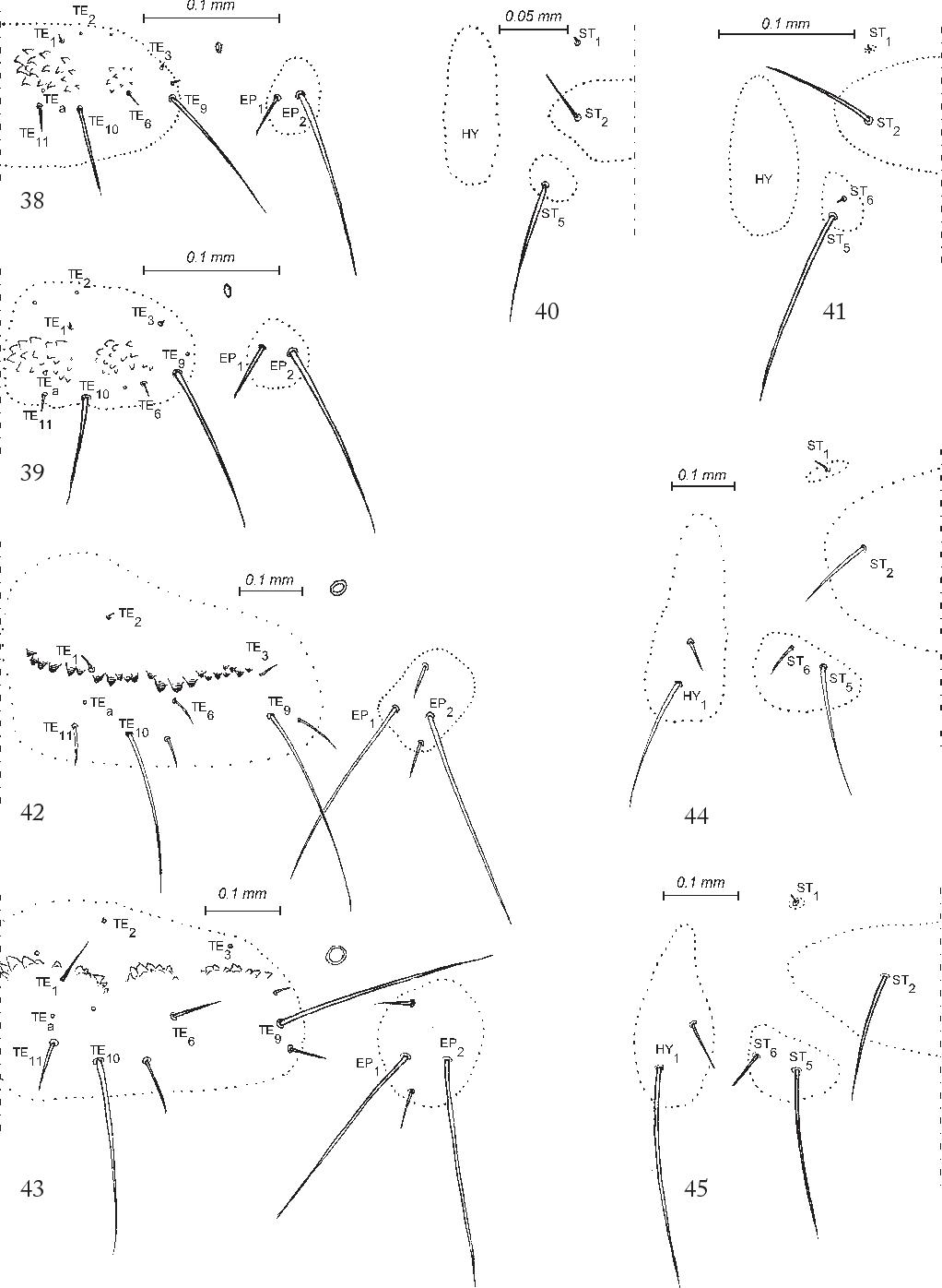 figure 38-45