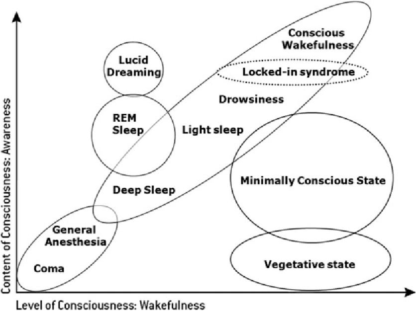 Chapter 2 Disorders of Consciousness : Coma , Vegetative and