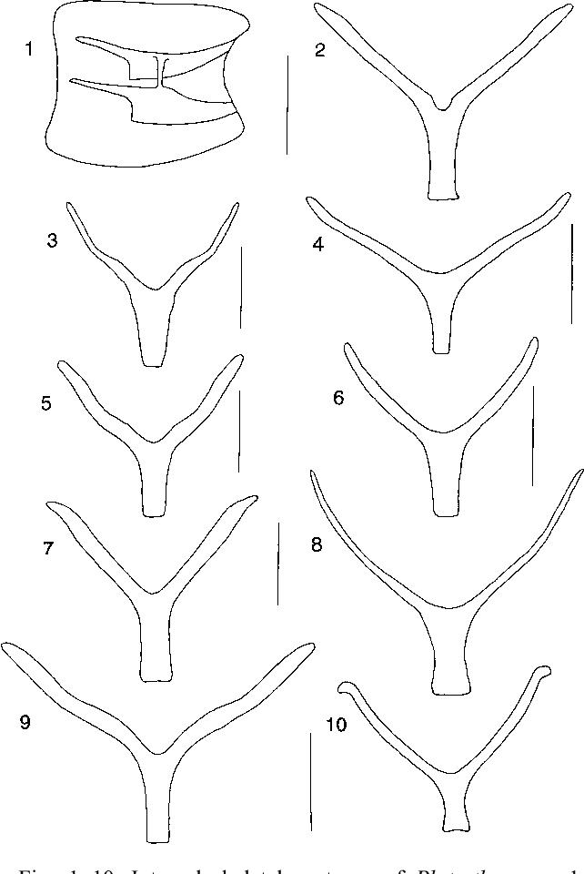 figure 1–10