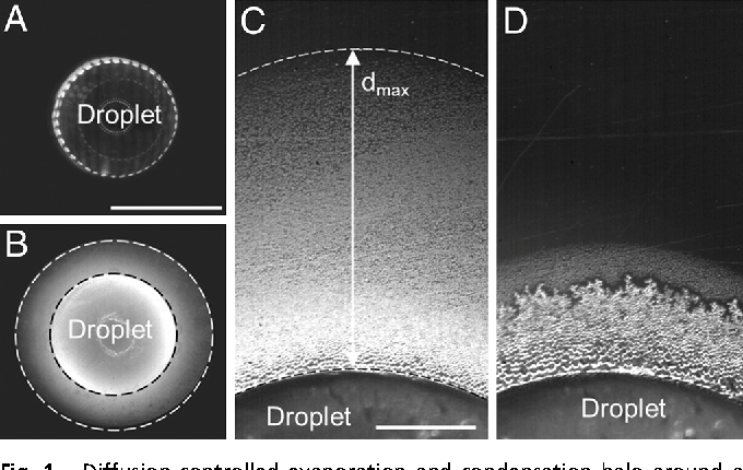 Figure 1 from Frost halos from supercooled water droplets