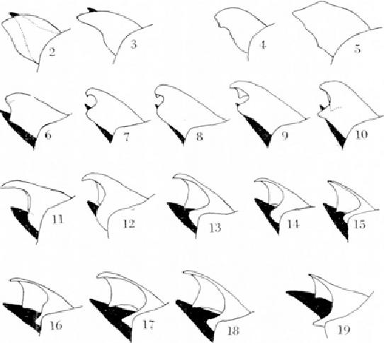 figure 2-19