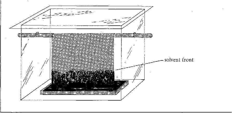 figure 17.3