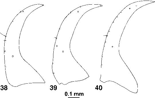 figure 38–40