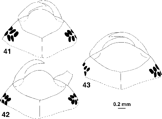 figure 41–43