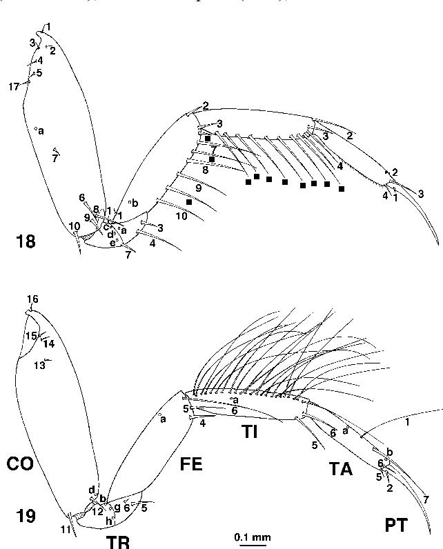 figure 18–19