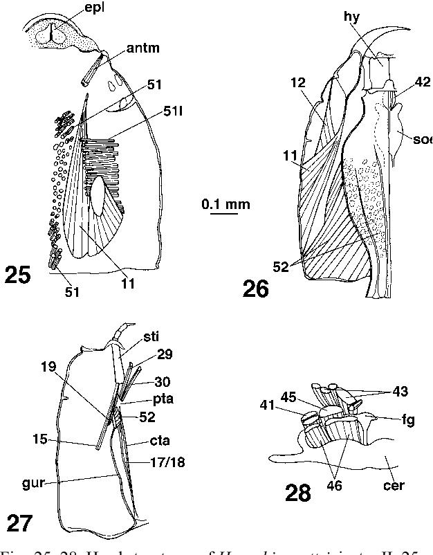 figure 25–28