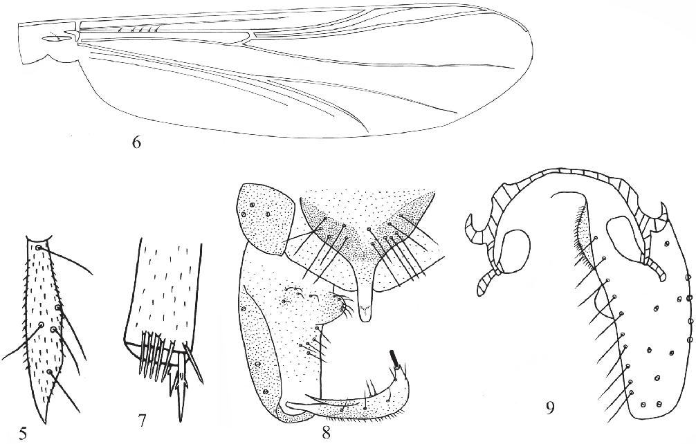 figure 5–9