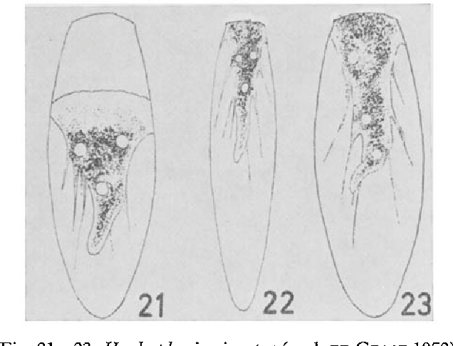 figure 21-23